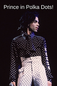 -CSQ- # 47 Prince in Polka Dots!